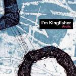 Arctic - I'm Kingfisher Album Review