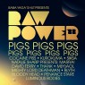 Raw Power Festival