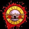 View all Guns 2 Roses tour dates