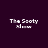 View all The Sooty Show tour dates