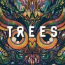 View all 2000 Trees Festival 2013 tour dates