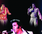 View all The Elvis Years tour dates