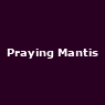 View all Praying Mantis tour dates