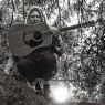 View all Ty Segall tour dates