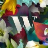 View all Wilderness Festival tour dates