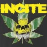Incite