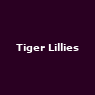 View all Tiger Lillies tour dates