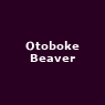 View all Otoboke Beaver tour dates