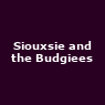 View all Siouxsie and the Budgiees tour dates