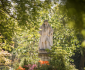 View all Chelsea Physic Garden tour dates