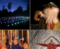 View all Christmas At Bedgebury tour dates