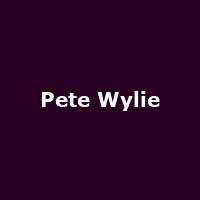 Pete Wylie - Image: www.petewylie.com