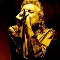 Robert Plant - Image: www.robertplant.com