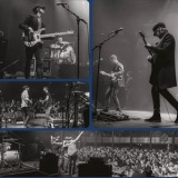 The Rifles - Image: www.therifles.co.uk