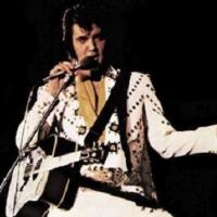 Suspiciously Elvis - Image: www.suspiciouslyelvis.co.uk
