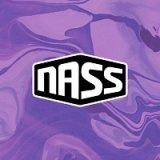 NASS Festival 2013