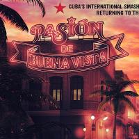 Pasión De Buena Vista