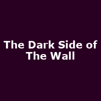 The Dark Side of The Wall - Image: www.pinkfloydtribute.co.uk