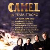 Camel - Photo: Caron Malcolm