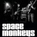 Space Monkeys