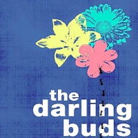 The Darling Buds - Image: twitter.com/theedarlingbuds