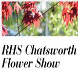 RHS Chatsworth Flower Show - Image: twitter.com/ChatsworthHouse