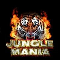 25 Years Of Jungle Mania