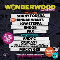 Wonderwood Festival, Sonny Fodera, Hannah Wants, Low Steppa, Andy C