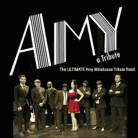 Amy - A Tribute