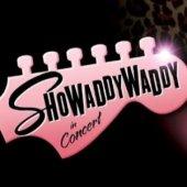 Showaddywaddy - Image: www.showaddywaddy.net